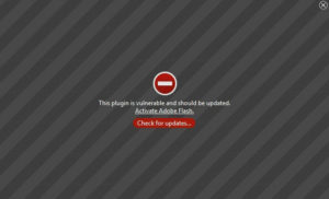 Adobe Flash Error Message